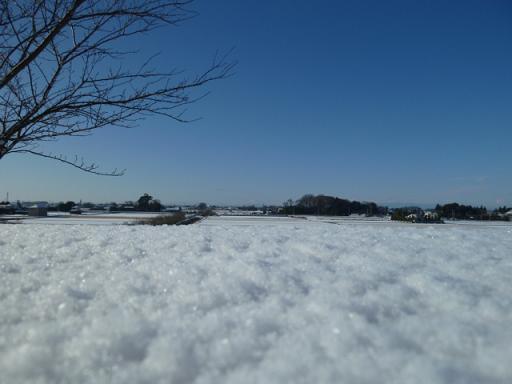 初雪ー土手の上から.JPG