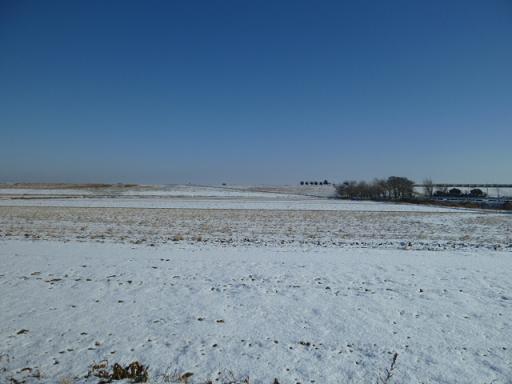 雪と田んぼ.JPG